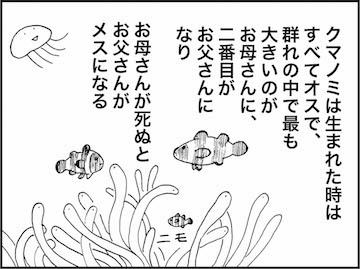 kfc01116-5