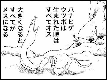 kfc01116-6