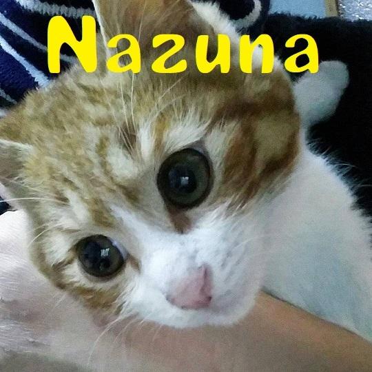 Nazuna.jpg
