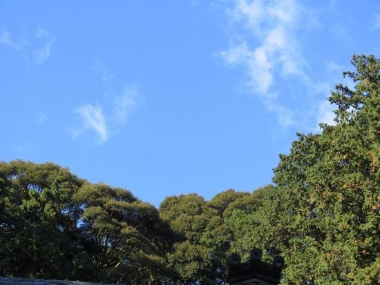 渭伊神社の上に飛行機