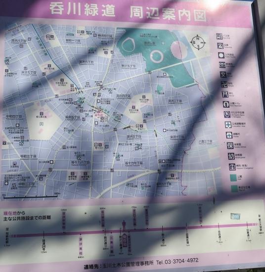 世田谷 呑川緑道