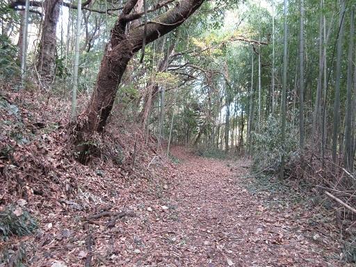 浅間山古墳往路