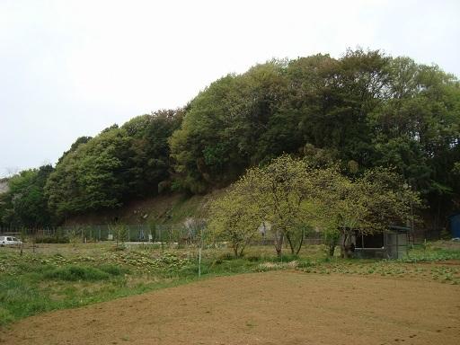 西谷戸横穴墓群