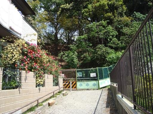 駒岡中郷市民の森