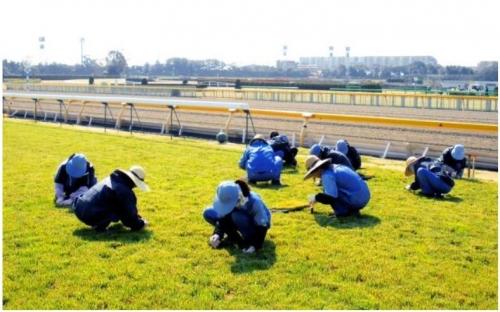 【競馬】東京競馬場で求人出てるけどちょっと興味ある