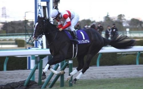 【競馬】第69回朝日杯フューチュリティステークス(GⅠ) 反省会