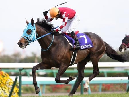 【競馬】大障害のオジュウか有馬のキタサンのどちらかに単勝10万円ブチ込みたいんだけど、どちらが固い?