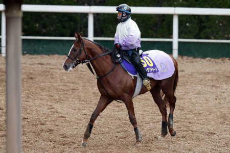 【有馬記念】スワーブリチャードが前走アルゼンチンで倒した相手が駄馬しかいないんだがどう評価すればいい?