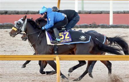【競馬ネタ】キタサンブラック、80秒想定の最終追い切り