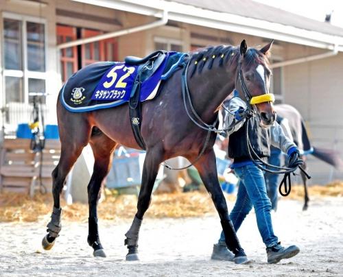 【有馬記念】複勝で10万突っ込むから確実に3着以内に入る馬教えろ