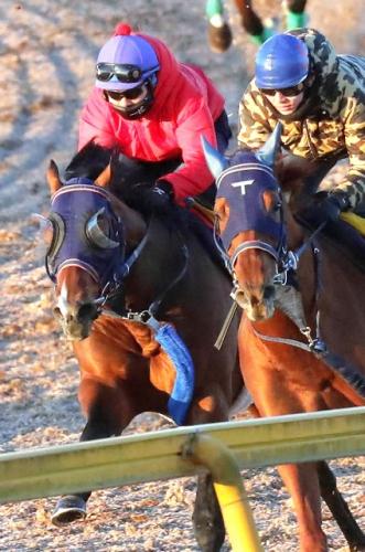 【競馬】戸崎「今年は特にリーディングを強く意識してやっていきたい」