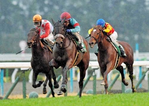【競馬】アーモンドアイとダノンプレミアムどっちが強い?