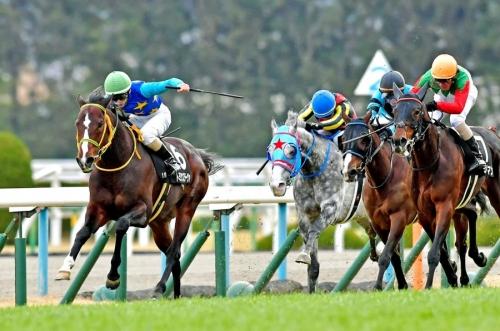 【競馬】3000m以上の国内平地レースが6つしかない件(OP、G3、G3、G2、G1、G1)