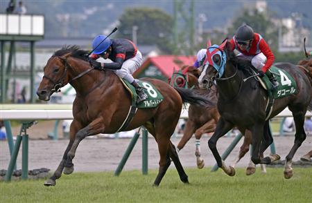 【競馬】アルバートドックが引退!イタリアで種馬にw