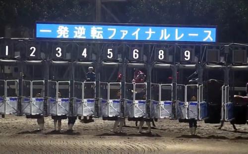 【競馬】地方競馬の売上がうなぎ上りの理由って何?