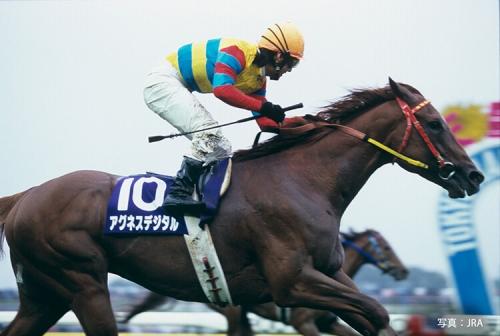 【競馬ネタ】競馬史に残る名言、迷言