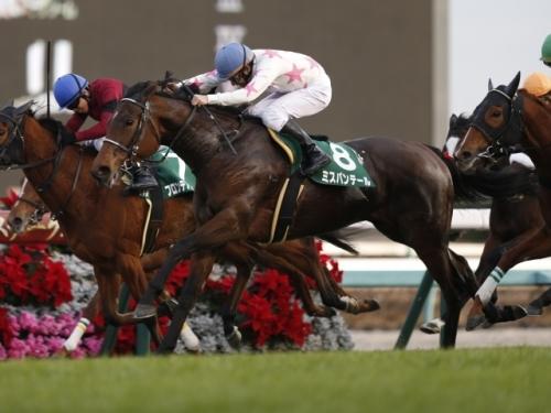 【競馬予想】第53回 京都牝馬ステークス(GIII)
