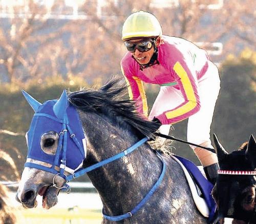 【競馬】テイエムジンソクの次走は武豊あるよな?