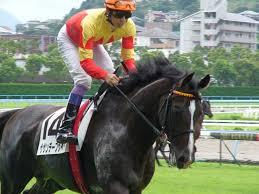 【競馬】ザサンデーフサイチ産駒の馬産地での評判が凄い 種付数 7→8→11頭