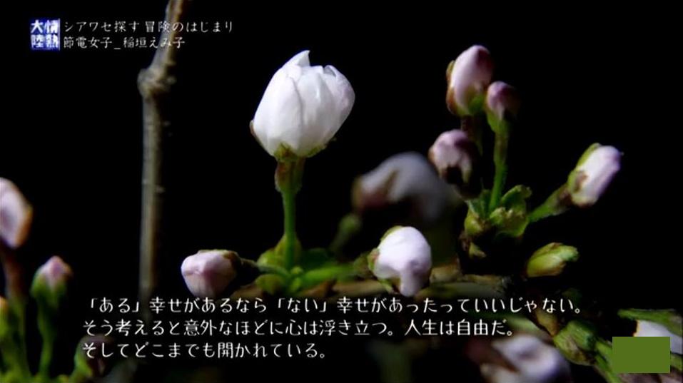 jonetsu3.jpg