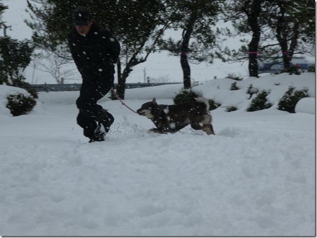 20171217福井雪02-38