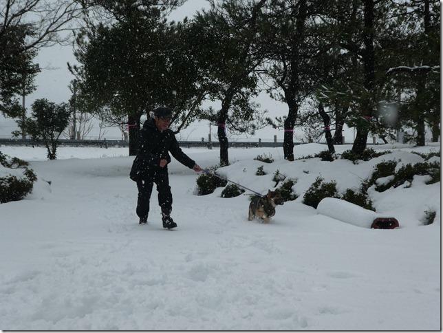 20171217福井雪02-42