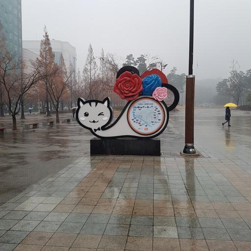 20171224_121248.jpg