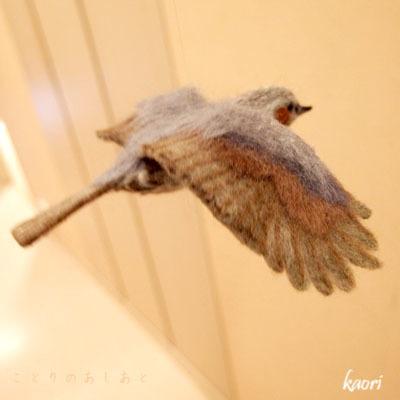 IMG_3908飛ぶヒヨドリc