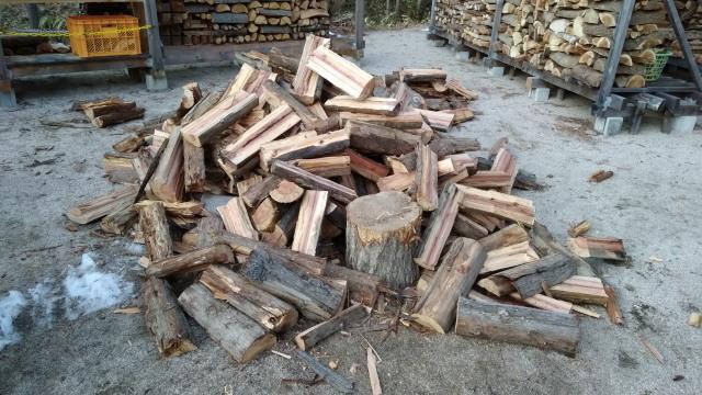 杉の薪割り1231