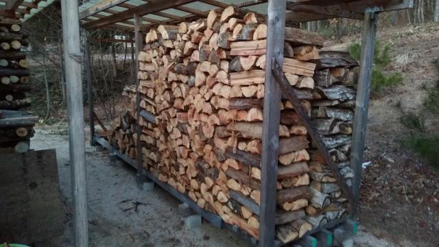 杉の積み込み1231