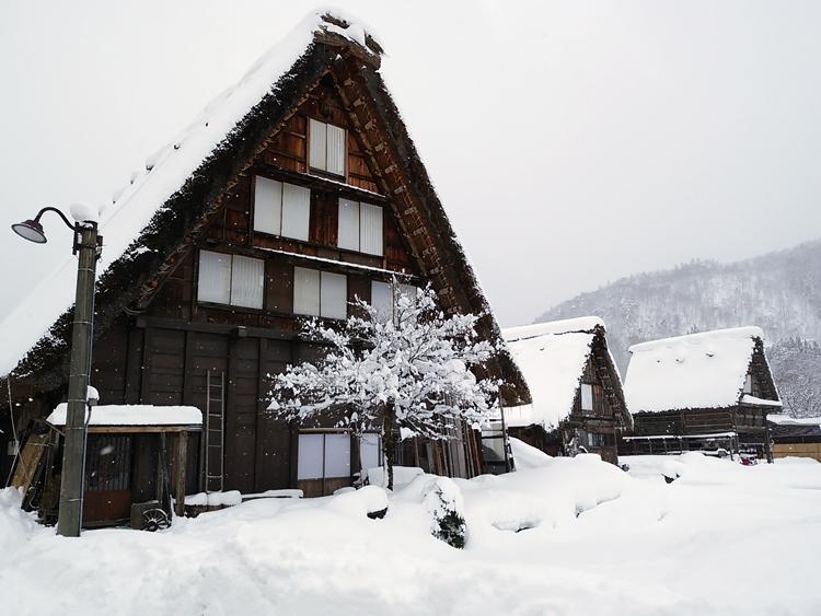みんな楽しそうに雪とたわむれたり、写真を撮ったり、白川郷1
