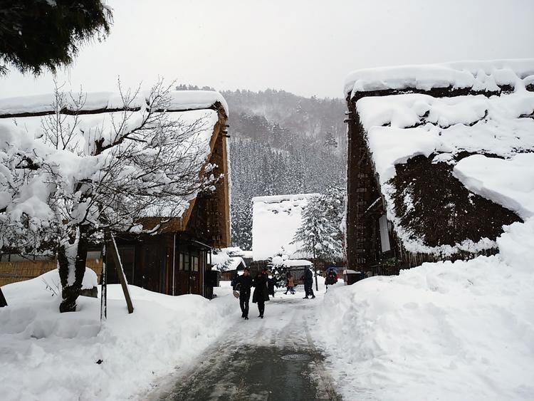 みんな楽しそうに雪とたわむれたり、写真を撮ったり、白川郷3