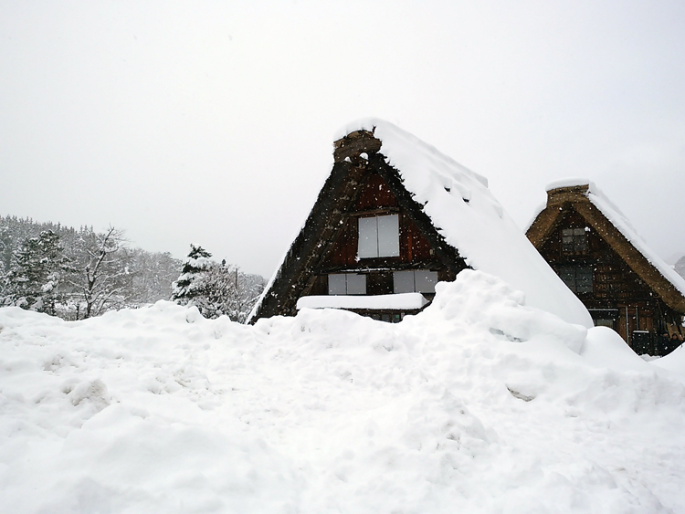 みんな楽しそうに雪とたわむれたり、写真を撮ったり、白川郷4