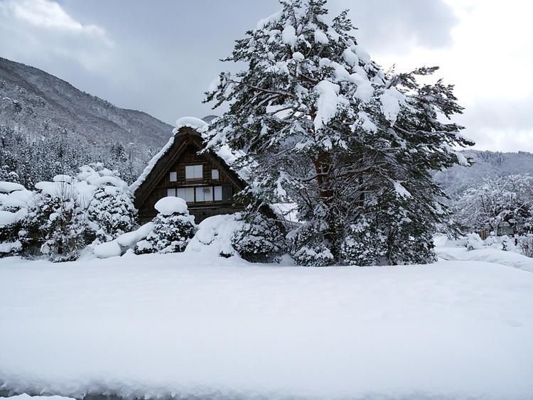 冬景色に彩られた世界遺産を、どうぞのんびりと満喫2