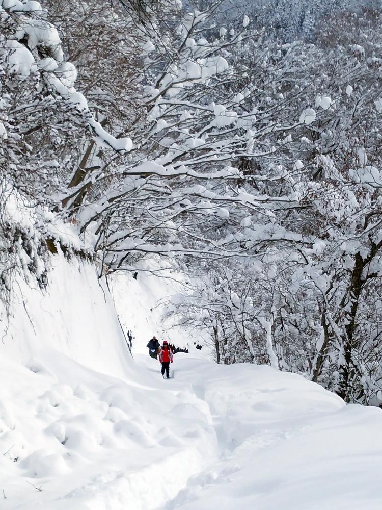 白川郷 澄んだ空気と雪景色が美しい4
