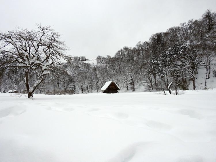 冬の最強寒波の猛威が続く白川郷6