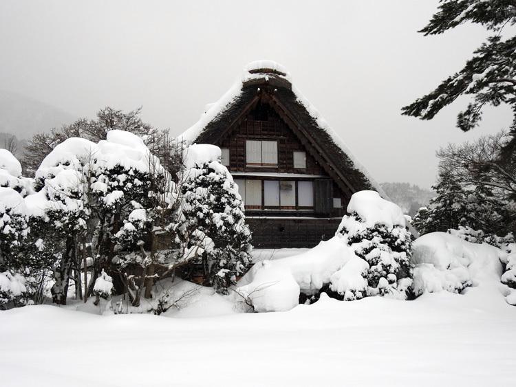 冬の最強寒波の猛威が続く白川郷8