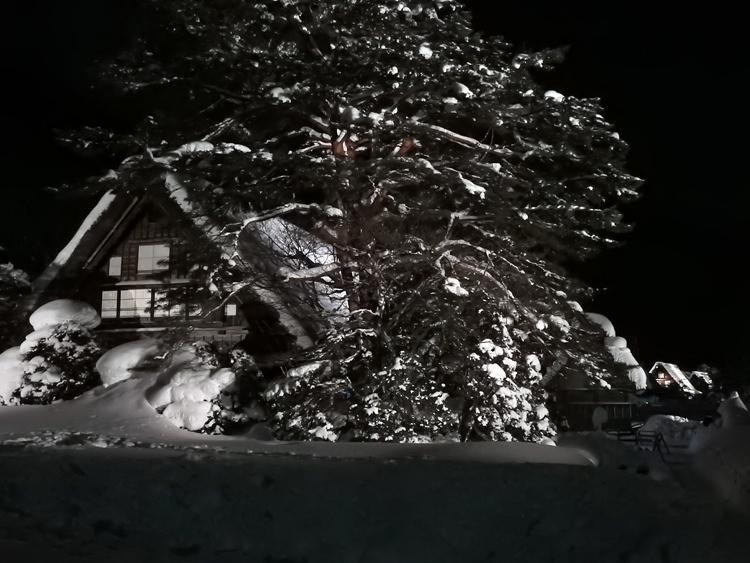 1月28日 第2回白川郷ライトアップ2