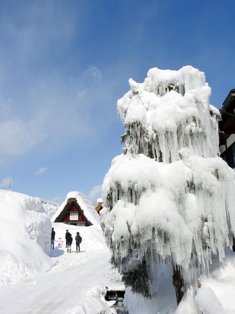 白川郷はやっぱり雪景色10