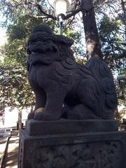 ときわ台天祖神社 狛犬