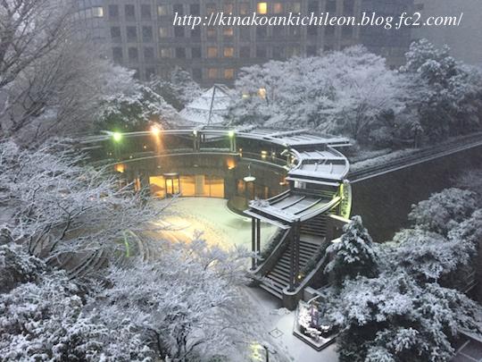 180125 Snow7