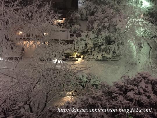 180125 Snow10