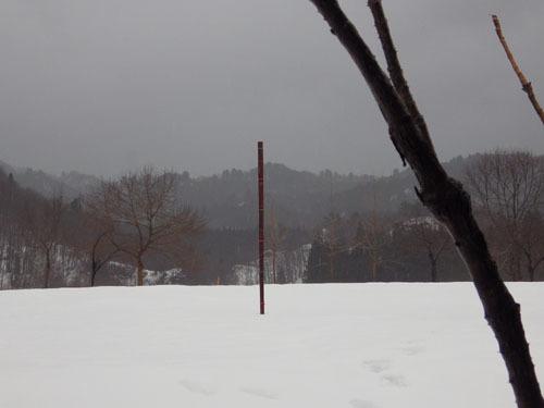 180109 積雪