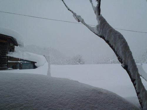 180111 雪