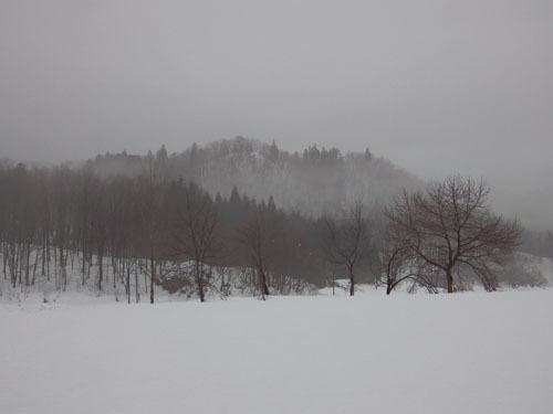 180117 霧の朝1