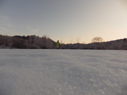 180120 凍み渡り