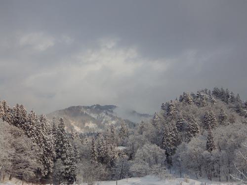 180204 朝の風景2