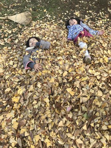 落ち葉の布団?