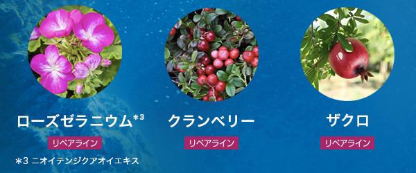 ビオロジー 植物エキス リペアライン