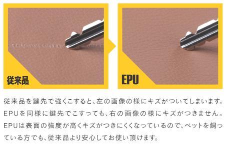 EPU.jpg